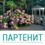 Партенит Экскурсии Крым